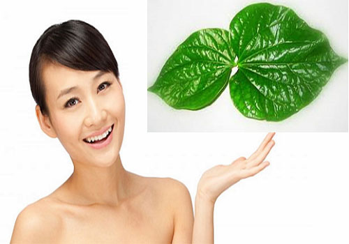10 Cách chữa vùng kín có mùi hôi tại nhà hiệu quả