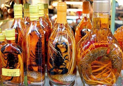12 Bài thuốc ngâm rượu chữa yếu sinh lý cực hiệu quả