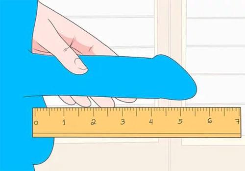 Cách đo chiều dài kích thước dương vật