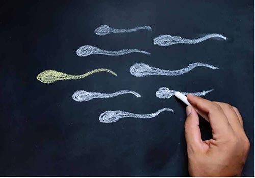 Để dành tinh trùng bao lâu thì tốt cho việc mang thai