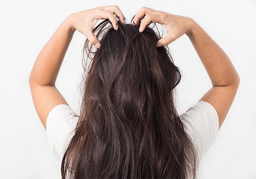 Mình thường xuyên bị ngứa da đầu có sao không?